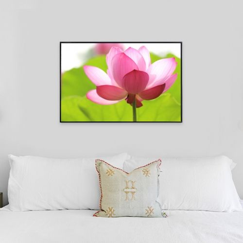 Wall Art Floral